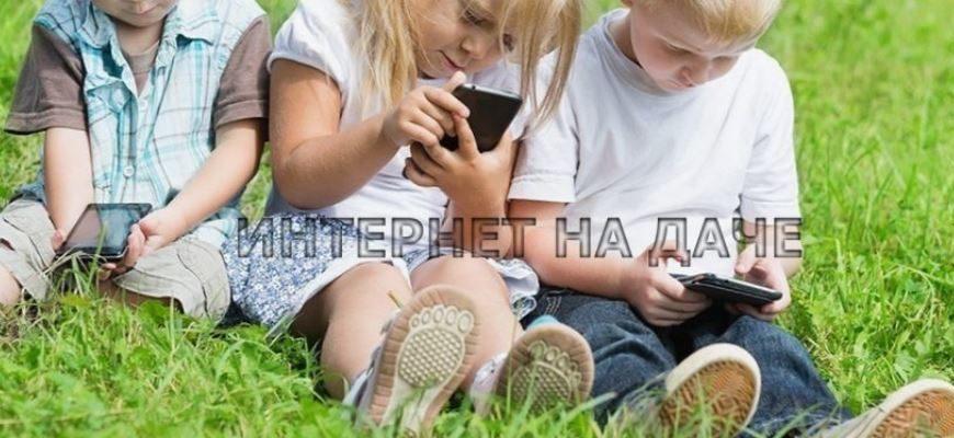 Как провести интернет в деревне Голубое фото
